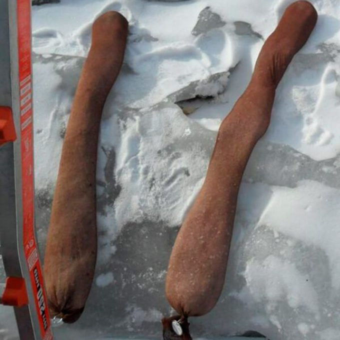 Pantyhose with salt on roof