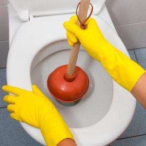 how to clean a toilet plunger