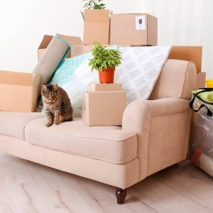 Stress-Free Moving: Top 10 Moving Mistakes to Avoid