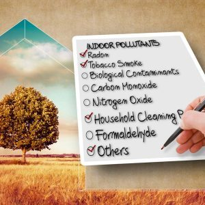 Why You Should do a Home Air Quality Test
