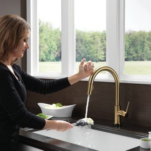 This is the Kitchen Faucet Everyone Wants