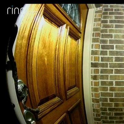 snake caught on ring doorbell