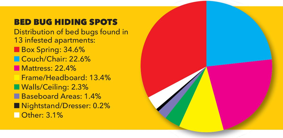 bed bug hiding spots chart