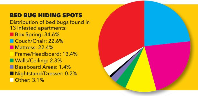 bed bug hiding spots chart