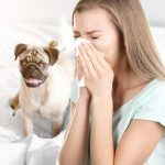 How to Reduce 5 Common Household Allergens