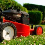 Top 10 Lawn-Cutting Do's and Don'ts to Avoid Grass Damage