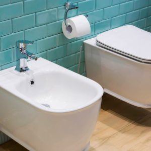 America is Behind on the Bidet Trend