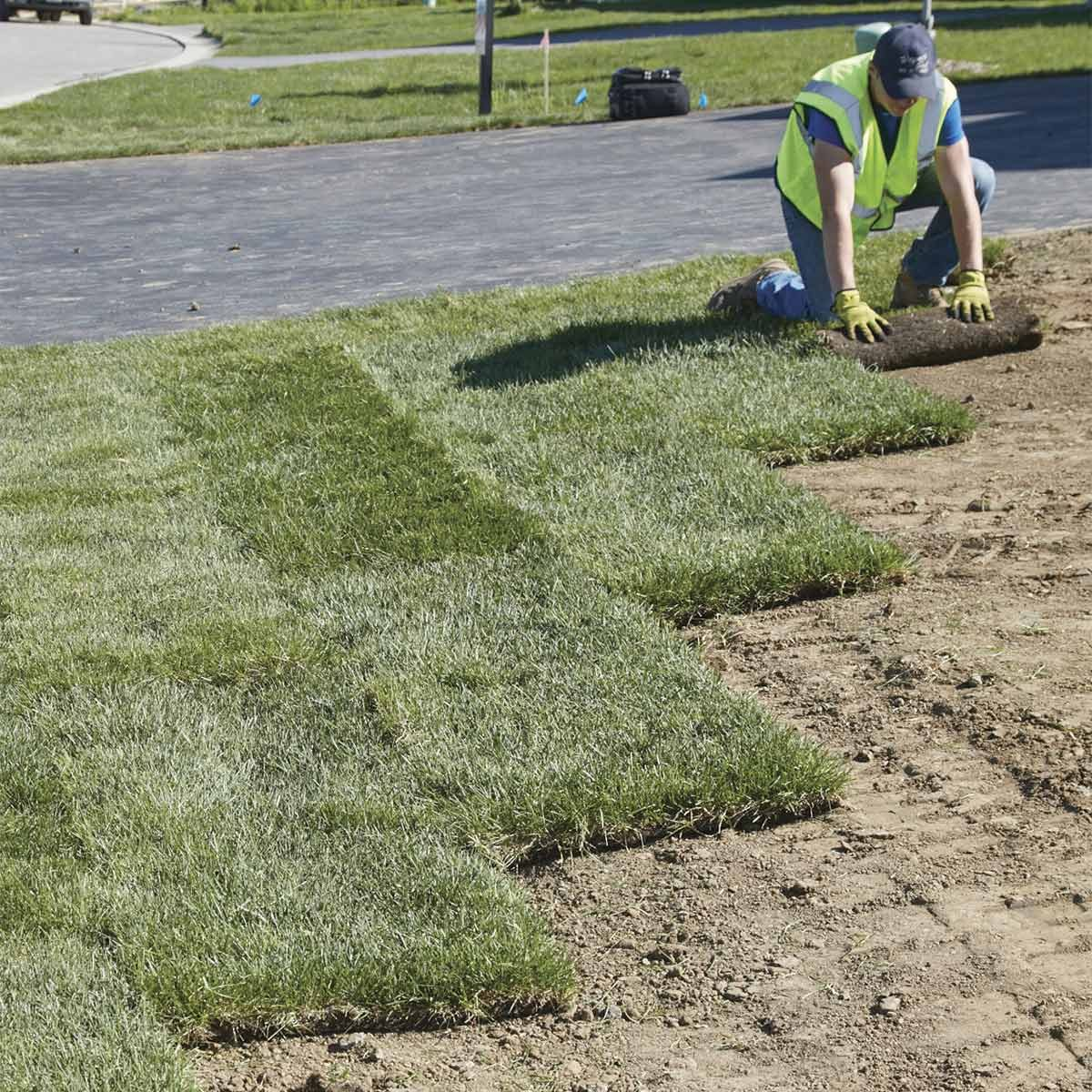 How To Prep For Sod Installation Family Handyman