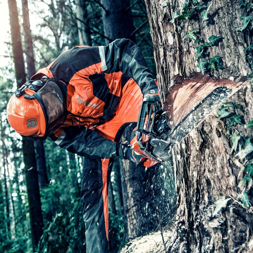 Cutting into a tree with a husqvarna chainsaw | Construction Pro Tips
