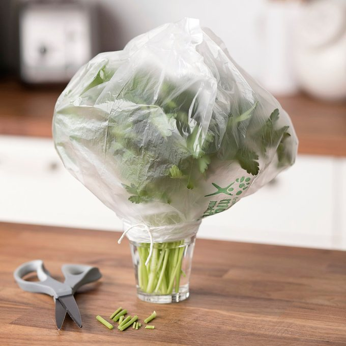 showing how to store parsley in a glass with water