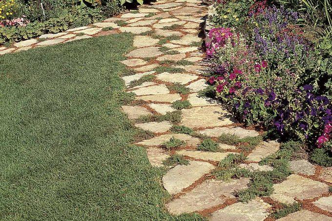 affordable garden path
