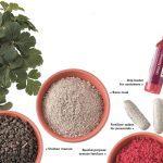 Lawn and Garden Fertilizer 101