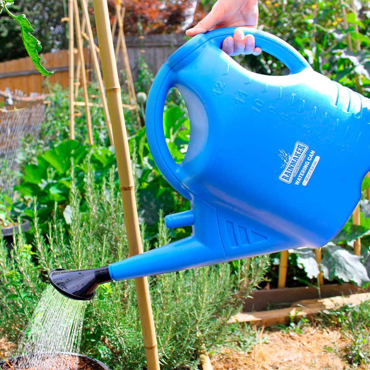 Rainmaker watering can