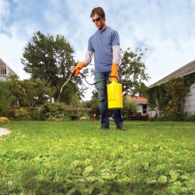 how to get rid of weeds in lawn - man spraying weed killer