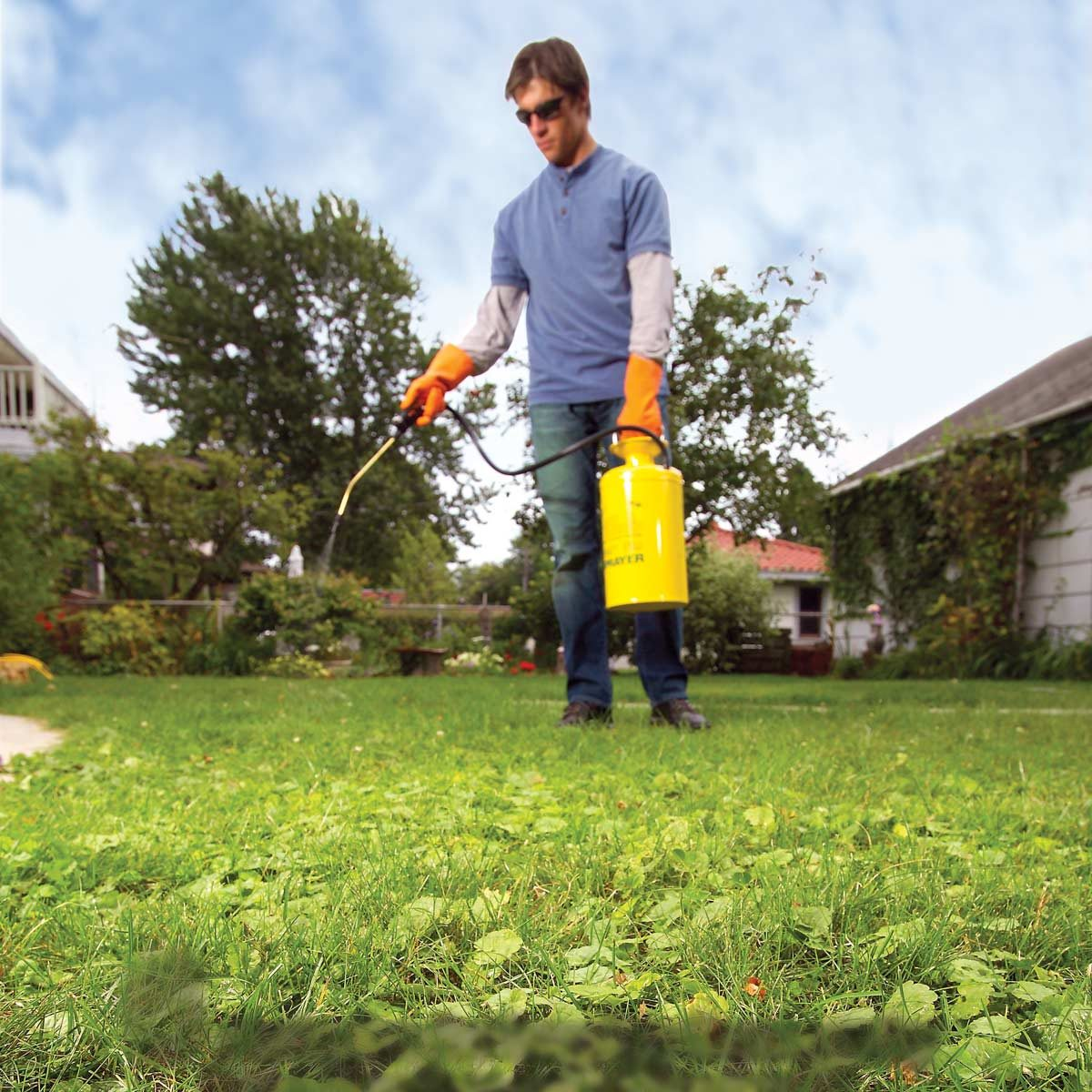 how to get rid of weeds in lawn - 6 tactics | the family