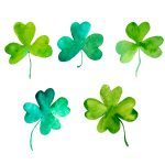 What's the Difference Between Shamrock and Four-Leaf Clover?