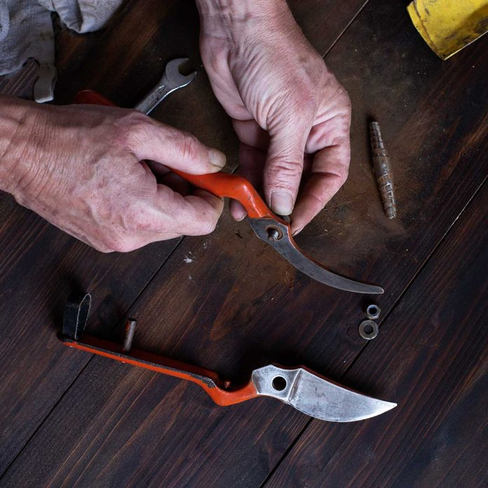 Working On Garden Shears Gettyimages 1294395349