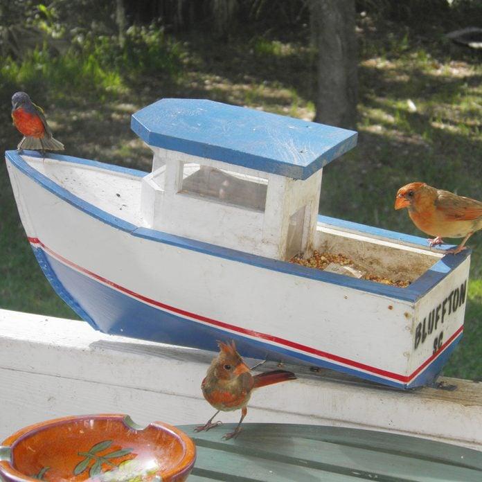 Bird-Feeder-Boat