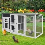 Ready to Raise Chickens? These Are Our Favorite Coops!