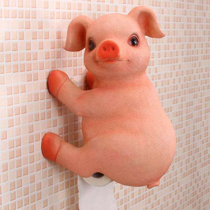 12 Bizarre Toilet Paper Holders