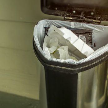 This Nifty Trick Will Eliminate the Odor from Your Garbage ASAP