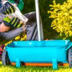 12 Essential Spring Gardening Tips From the Pros