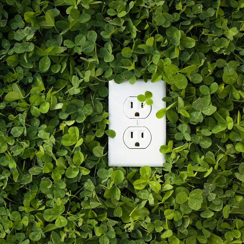 an outlet surrounded by shrubbery