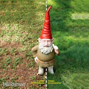 Lawns: How to Reseed