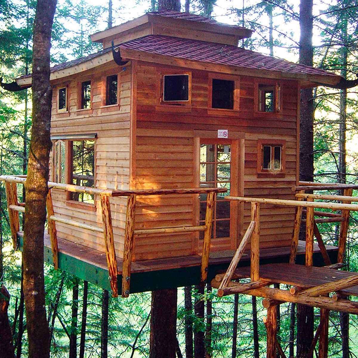 Home Design Ideas Build: Amazing Treehouse Ideas And Building Tips