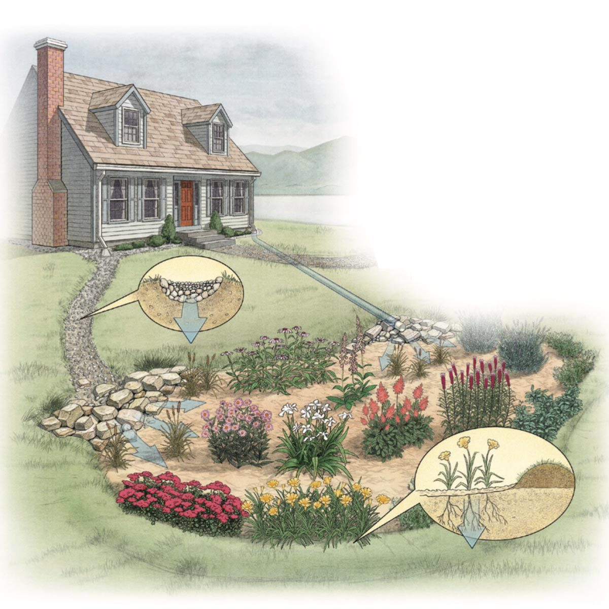 Build a Rain Garden diagram