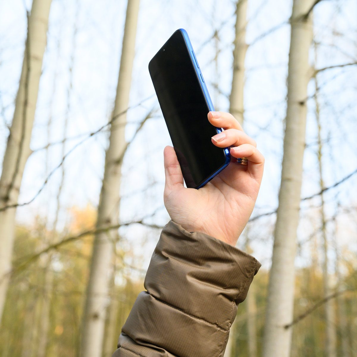 Close up of woman hand holding a the cell phone in the forest cell phone signal