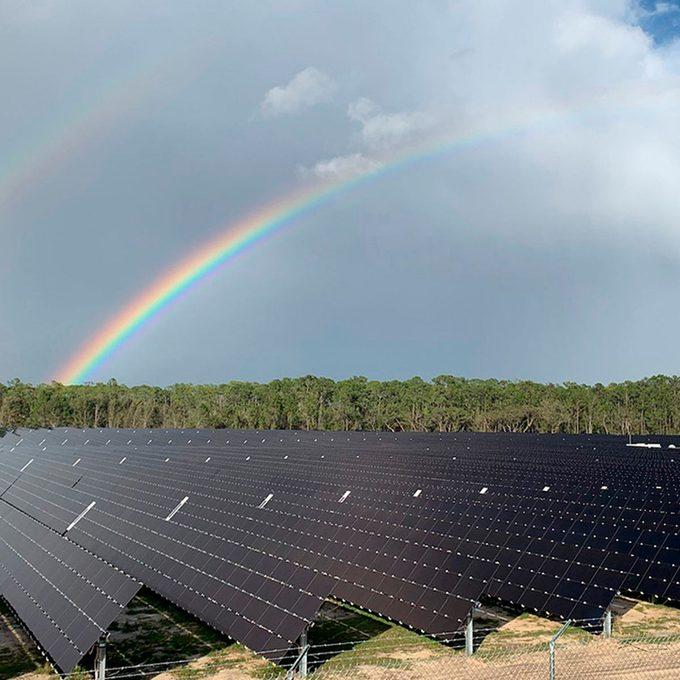 Solar farm at disney world