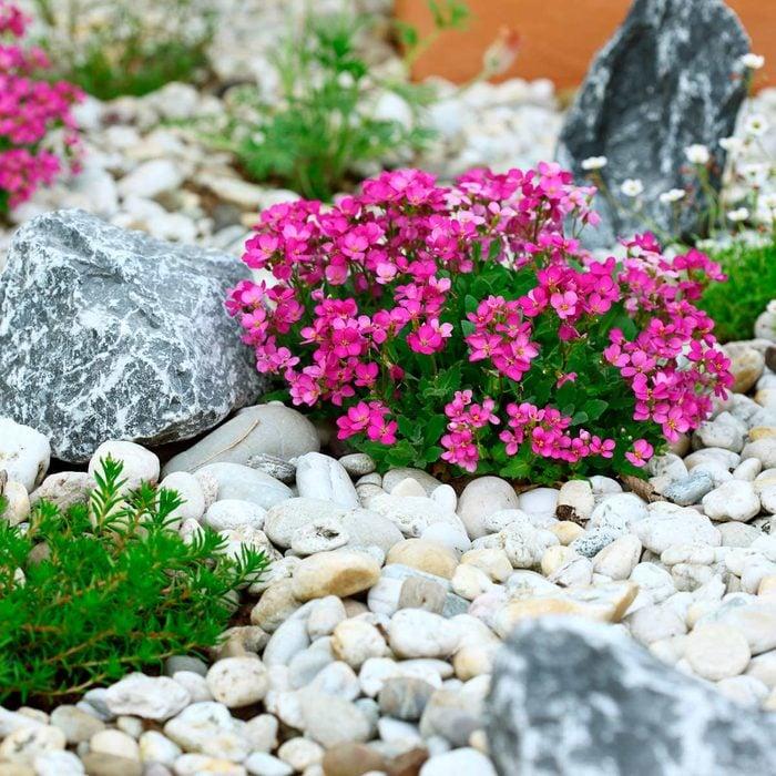 river rock flower bed