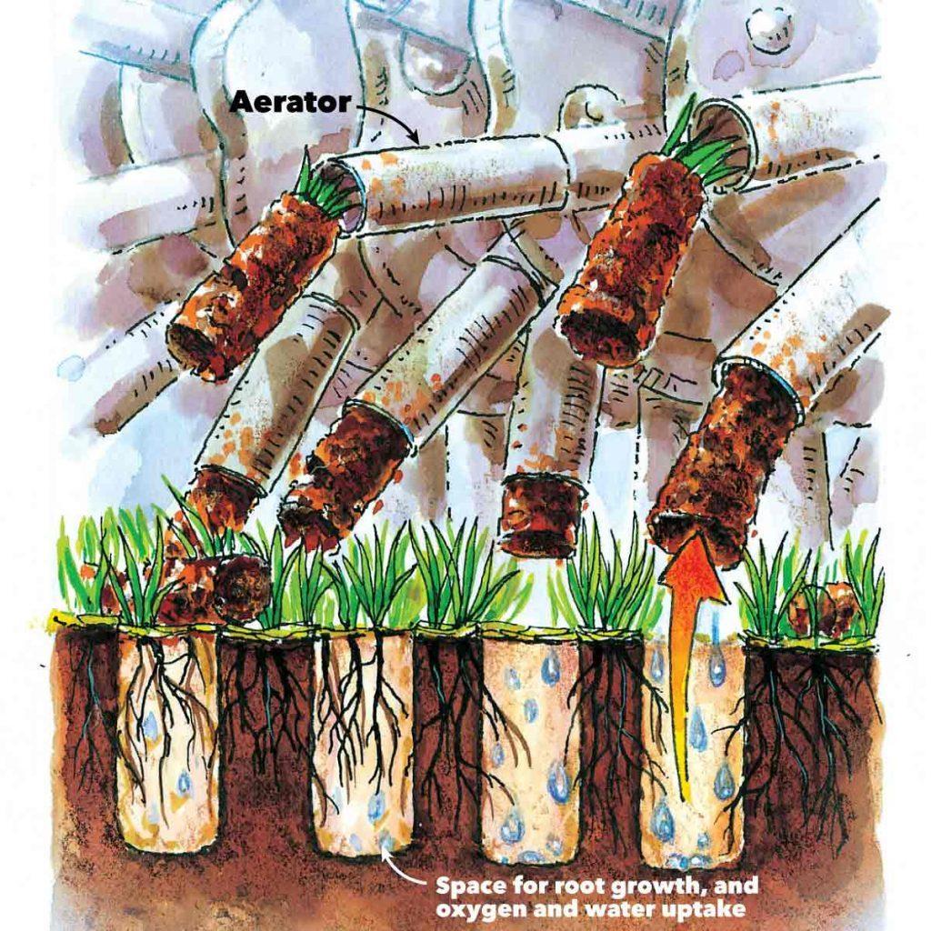 healthy lawn aerator