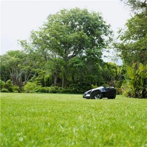 Robot Lawn Mower: Would You Go There?