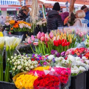 How to Find the Best Farmer's Market Flowers for Your Home