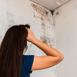 Mold & Mildew: How To Clean Black Spots In the Bathroom