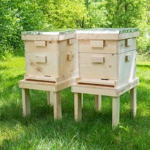 How to Build a Beehive