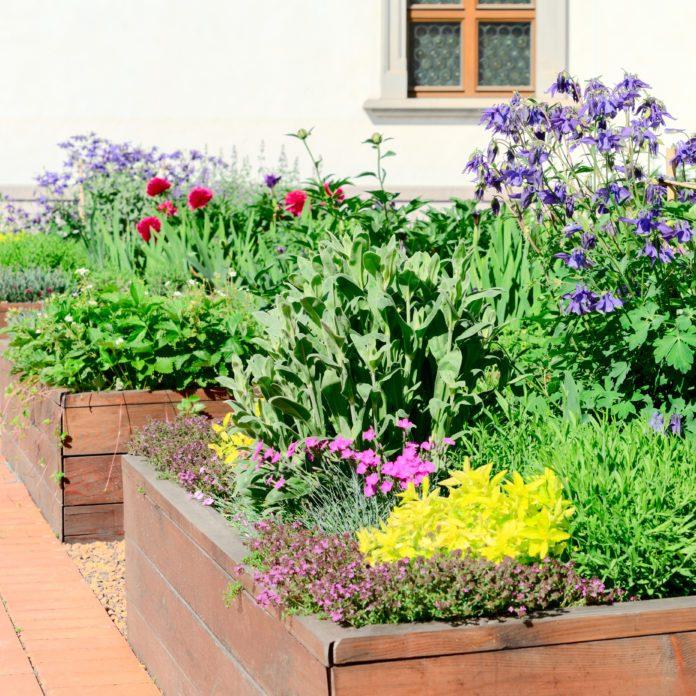 The Prettiest Veggies to Plant in Your Flower Garden