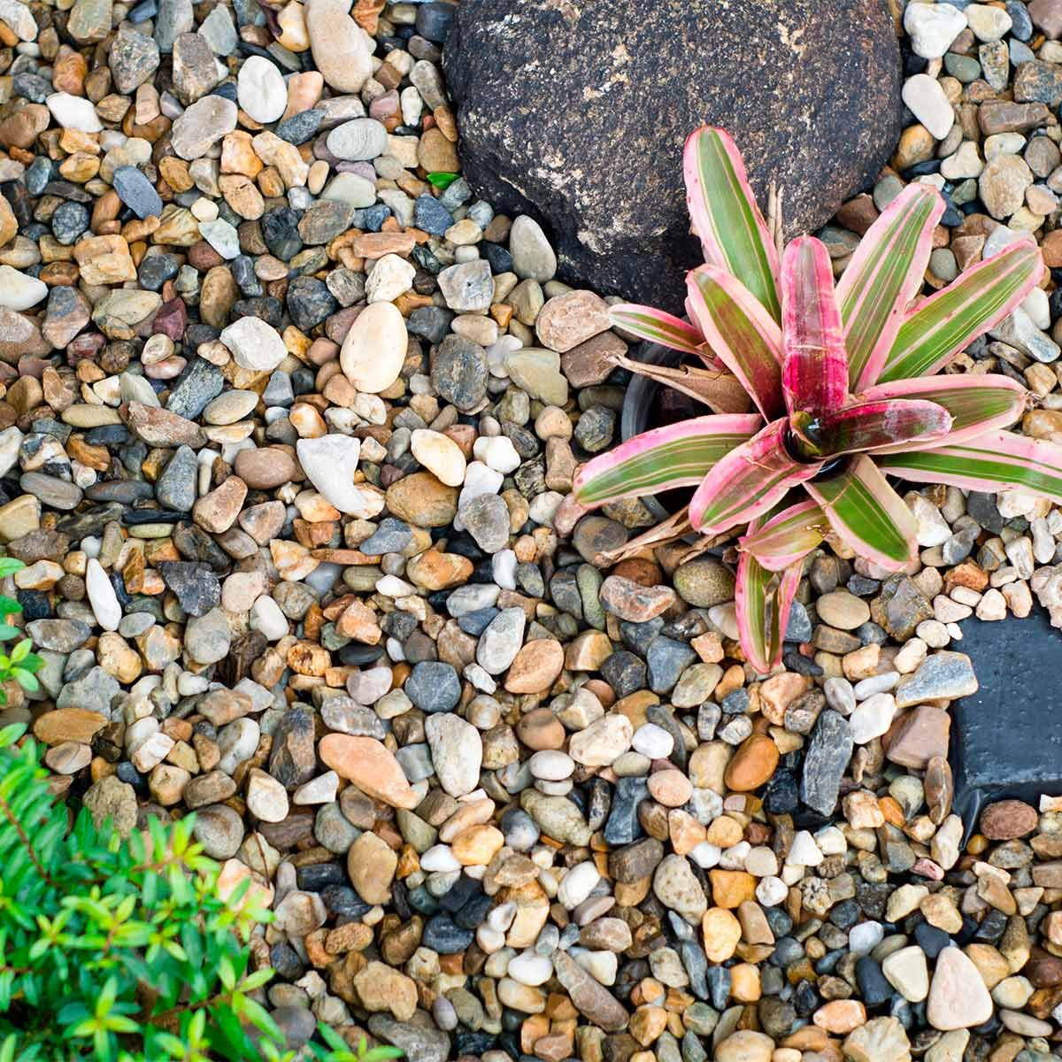 Pea Gravel Flower Bed Tips You Need To Know Family Handyman