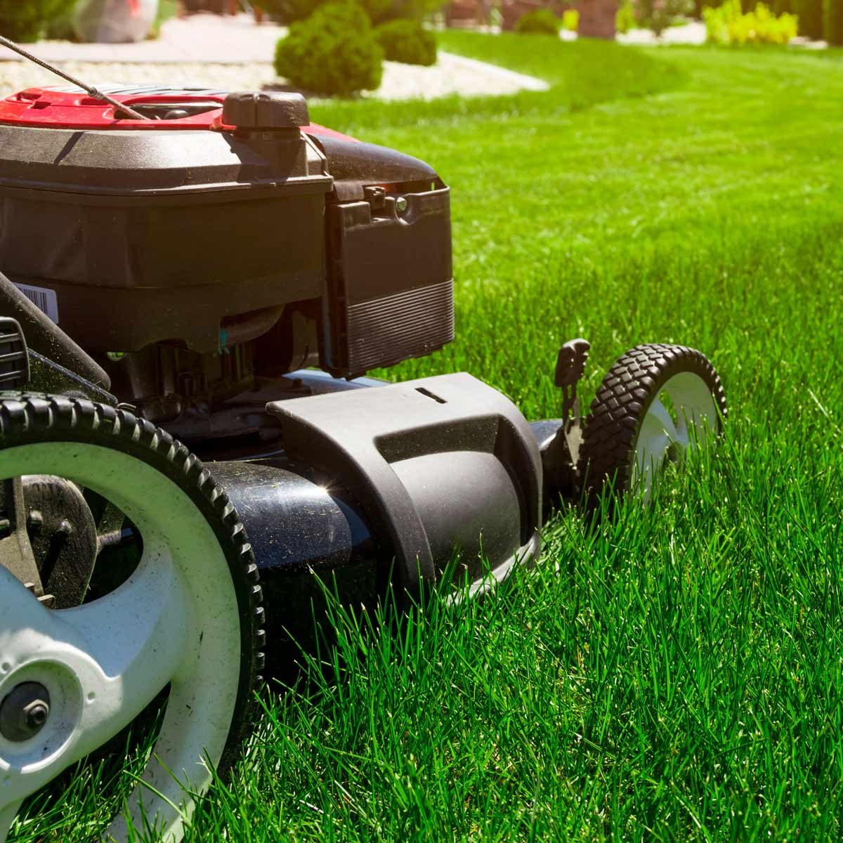 Do It Yourself Home Design: 10 Essential Summer Lawn Care Tips