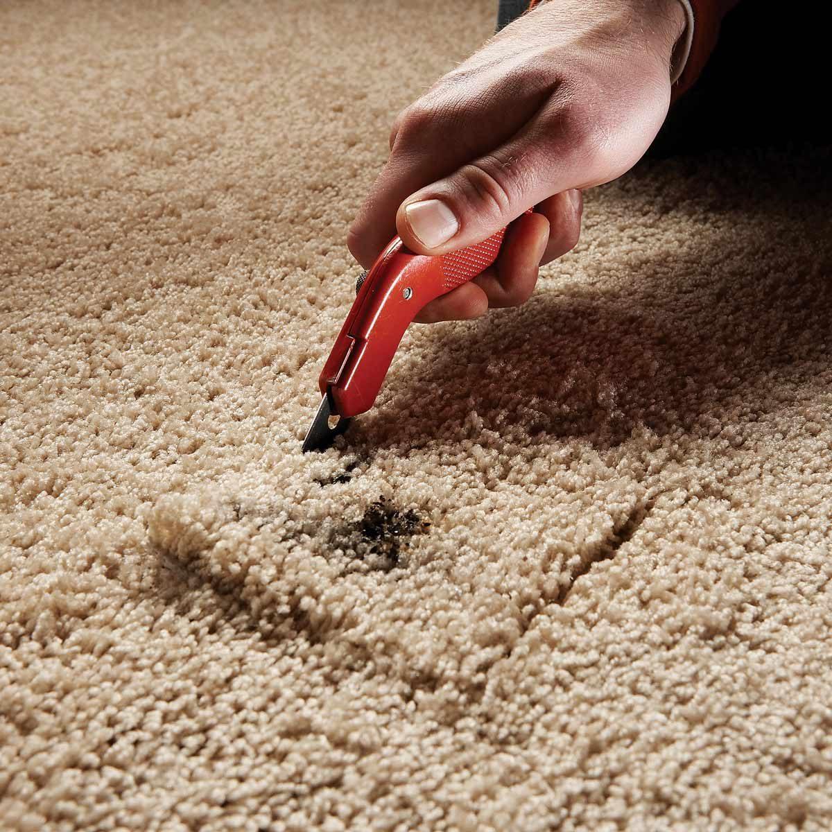 remove burnt carpet
