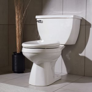 Tips for Choosing a Toilet