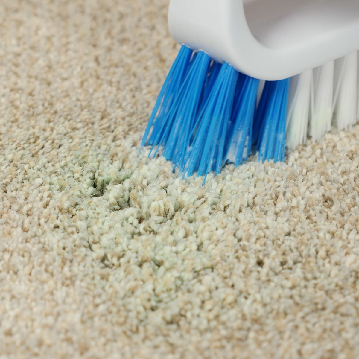 scrub slime stain out of carpet