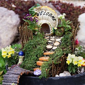 Fairy Garden Guide: Everything You Need to Know to Get Started