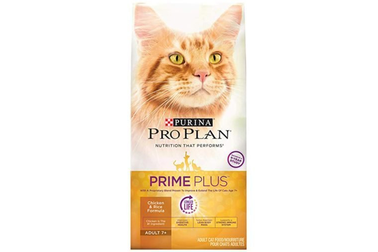 06_Best-dry-foods-for-older-cats