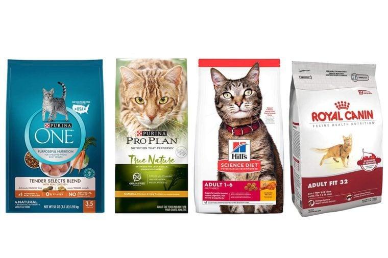 08_Best-dry-food-for-healthy-indoor-and-outdoor-cats