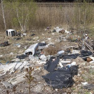 garbage dumped illegally into wild life