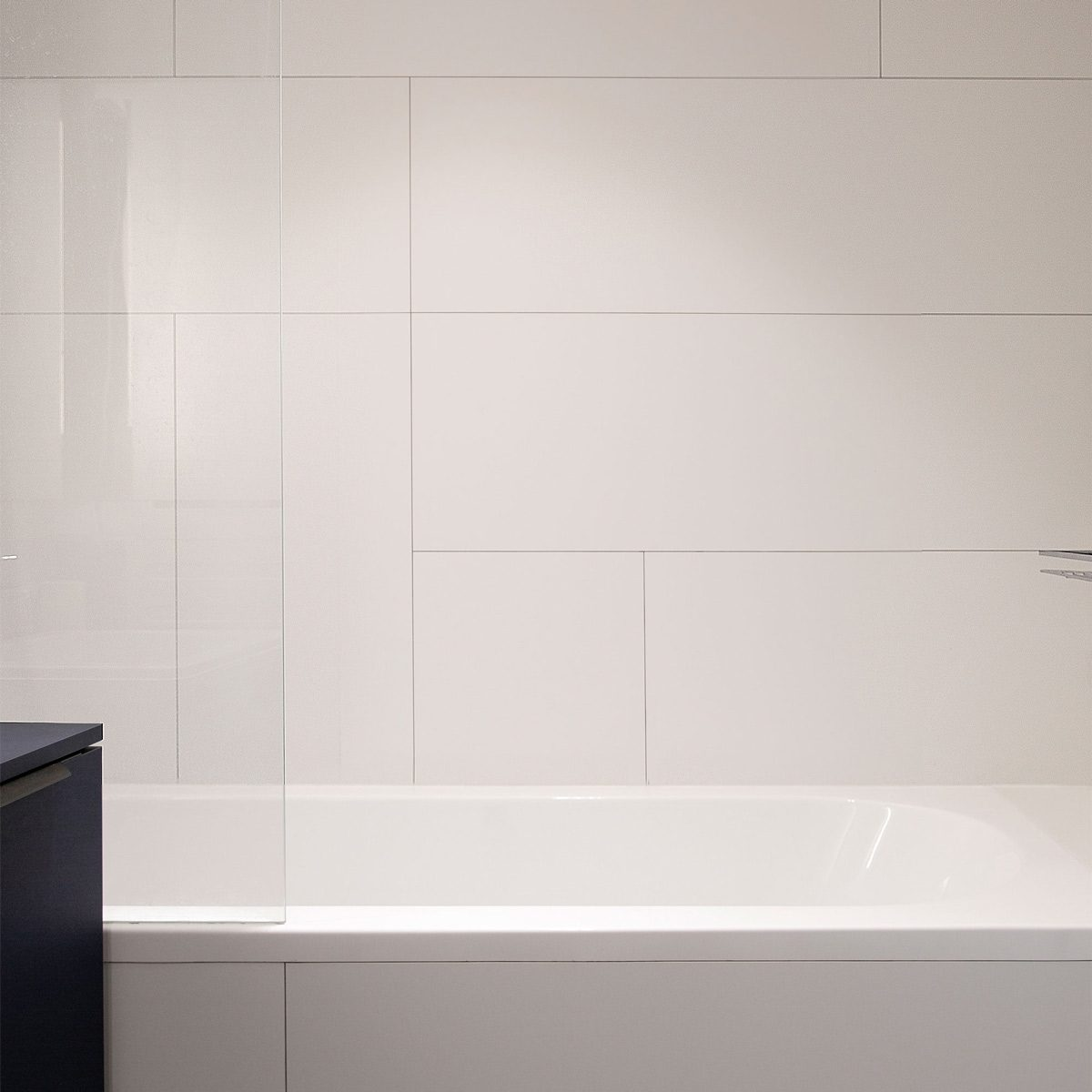 fenix in bathroom
