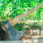 10 Property Line Clearance Horror Stories